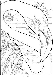 431 best coloring pages u0026 ideas images on pinterest draw