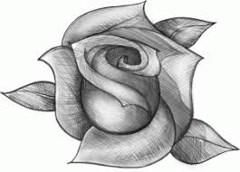 how to sketch a rose step by step for beginner easy video tutorial