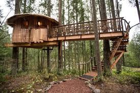 Treehouse Cleveland - nelson treehouse