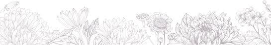 Flowers Salinas - meet the farmers u2013 california cut flower commission