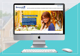 Web Design Home Based Business by The Accidental Salesman Business Coach Website Design Bibble Studio