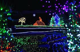 Zoo Lights Discount Tickets Point Defiance Zoo U0026 Aquarium Home Facebook