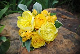 yellow peonies bridesmaid s bouquets were all yellow spray roses yellow