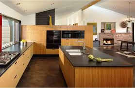 bamboo kitchen cabinet rta bamboo kitchen cabinets riothorseroyale homes quality