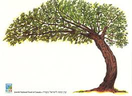 national fund of canada plant a tree