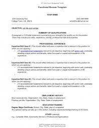 Resume Profile Template Combination Resume Examples Functional Resume Samples Resume