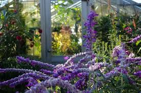 9 beautiful indoor gardens to visit in nyc