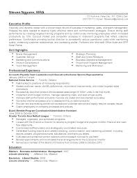 Fake Work Experience Resume Team Leader Experience Resume Resume For Your Job Application