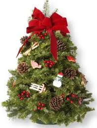 live tabletop tree decorated rainforest islands ferry