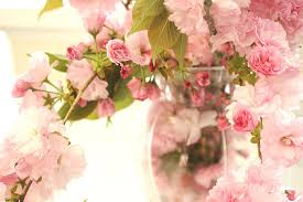 shabby flowers dreamy shabby chic cottage pink cherry blossoms flowers in vase