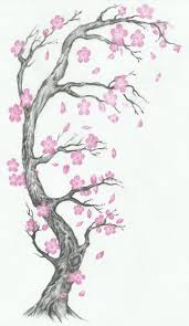 cherry blossom family tree pencil and in color