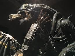 best alien vs predator picture