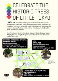 historic trees of little tokyo u2014 japanese american cultural