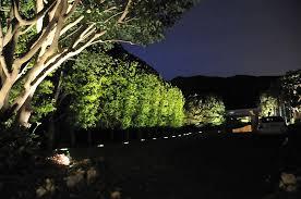 lights for hedges 28 images hedge lights garden lights