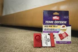 How To Make A Bed Bug Trap New Survey Confirms Majority Of Americans 67 Percent 1 Are Not