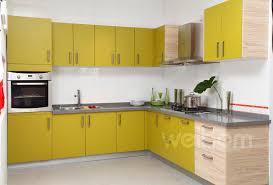 Kitchen Cabinets Pictures European Kitchen Cabinets Kitchen Designs