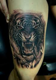 tiger thigh by fredy