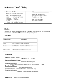 Professional Cv Template Professional Cv Format Download