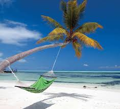 maldives hammock wall mural 9 wide by 8 0 high ebay mural of a beautiful beach in the maldive islands by george fischer