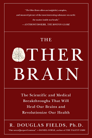 Barnes And Noble Hr Access Website The Other Brain Book By R Douglas Fields Official Publisher