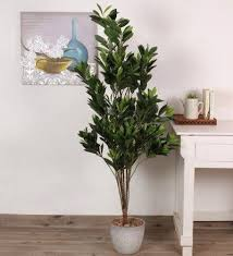 artificial decorative trees for the home 53 best beautiful plants for home and office faux images on