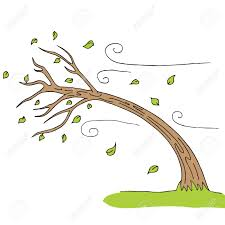 a wind blown tree royalty free cliparts vectors and stock