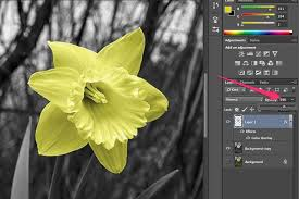 how do i use color overlay in adobe photoshop techwalla com