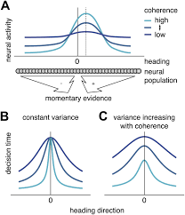 optimal multisensory decision making in a reaction time task elife