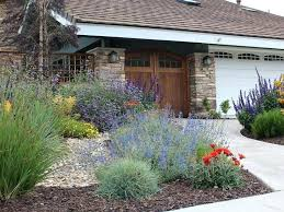 California Landscape Lighting Southern California Landscape Concepts Landscaping