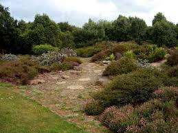 Botanic Gardens Dundee Of Dundee Botanic Garden Scotland Gardens Parks