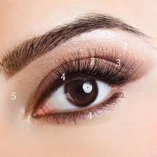 make them look bigger apply eye shadow image led use makeup