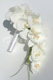 orchid bouquet bridal bouquet orchid bridal wedding portait with white orchid