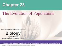 chapter 23 powerpoint the evolution of populations