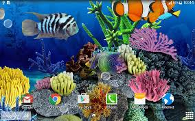 aesthetic halloween background coral fish live wallpaper android apps on google play