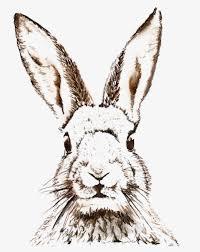 vintage rabbit free easter printable vintage clip sketch free vintage clip