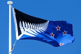 Blue White And Black Flag New Zealand U0027s Flag Referendum Will Pit Silver Fern Against British