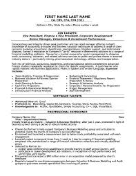 Finance Resume Examples by Vice President Of Finance Resume Template Premium Resume Samples