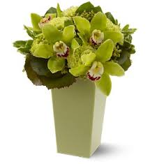 boca raton florist st s day flowers delivery boca raton fl boca raton