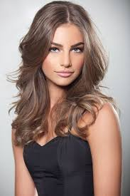 frosted hair color dark blonde hair bleach and tone levels pinterest dark