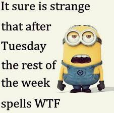 Despicable Me Minion Meme - top 40 funny despicable me minions quotes top 40 humor and