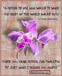 the wonderful words my friends