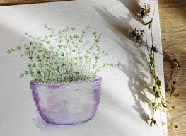 english home decor original watercolor thyme herbs painting kitchen herbs thyme
