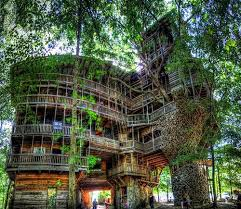 in crossville tn world s largest tree house in crossville tn open to the