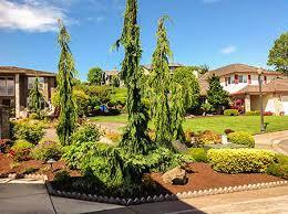 landscaping vancouver wa img 0086fr jpg