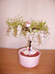 bonsai saule pleureur arbresenperles les arbres et arbustes