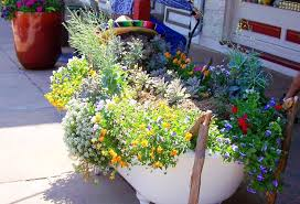 creative container gardening ideas