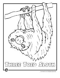 9 most endangered rainforest animals coloring pages animal jr