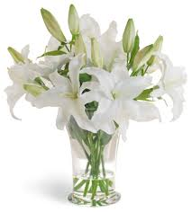 casablanca lilies white casablanca in vase sameday flower delivery to malaysia