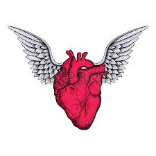 hand drawn elegant anatomic human heart with wings and keyhole