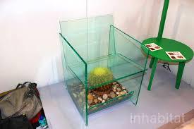 deger cengiz u0027s threatening cactus terrarium chair puts sitters on